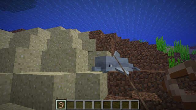リードを使ってイルカを捕まえる